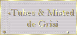 Banner grisi