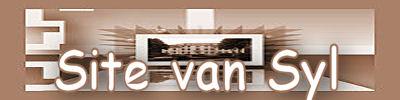 Banner site van syl