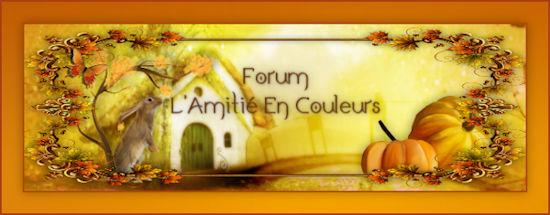 Banniere forum l amitie en couleurs