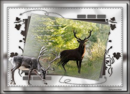 Beaute de la nature de pauline creations by mamyannick50